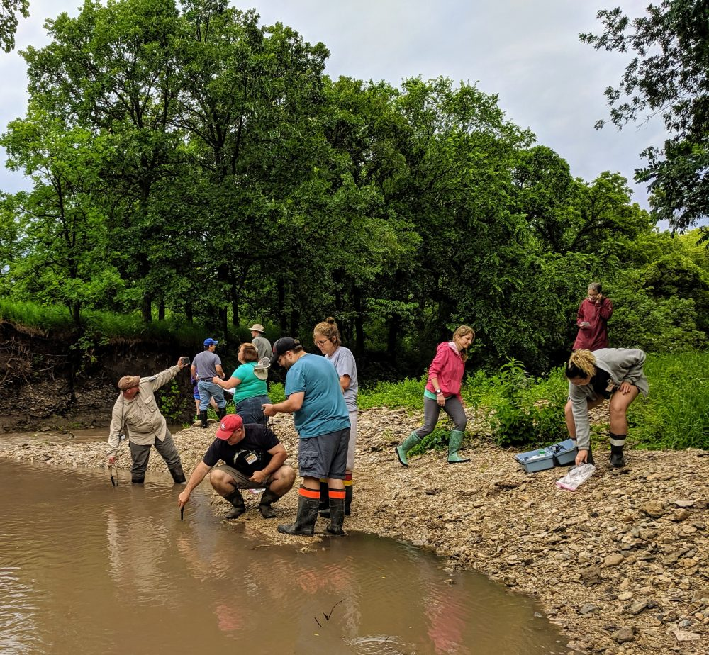 Kansas NSF EPSCoR is now accepting applications for the 2020 Ecosystems of Kansas Summer Institute